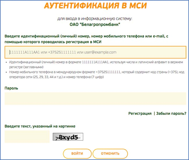 Аутентификация в МСИ